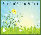 Scattering Seeds of Sunshine